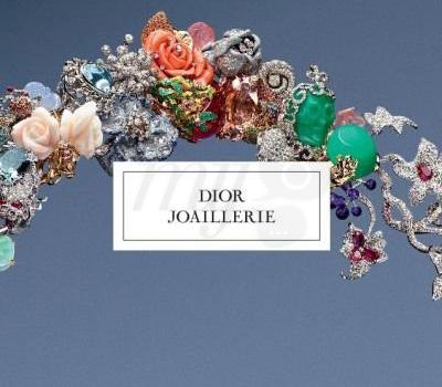 livre-dior-joaillerie-2012
