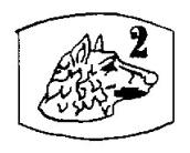 Poincon-Platine-Massif-de-2eme-Titre-Platine-a-900-milliemes-Tete-de-Chien-Blanc